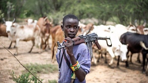 FULANI HERDSMEN: SOLDIERS, POLICE MOVE TO ANNIHILATE FARMERS IN MAMBILA PLATEAU SAYS GROUP