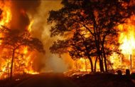 WILDFIRE KEEPS 130 FAMILIES OF JEHOVAH'S WITNESSES AWAY FROM HOME